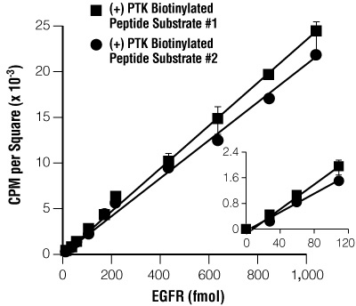 Linear detection of EGFR kinase activity with the SignaTECT® PTK Assay System.