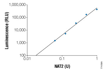 The luminescent signal is linearly dependent on the amount of NAT2 in the reaction.