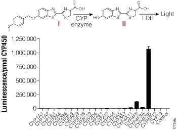 CYP enzyme selectivity for the Luciferin-4F2/3 substrate.