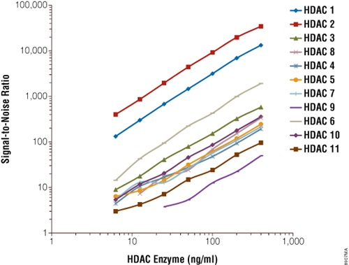 Broad linearity with HDAC Class I and II enzymes.