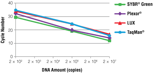 Standard curves constructed during amplification of PCV2 DNA using four different real-time PCR systems.