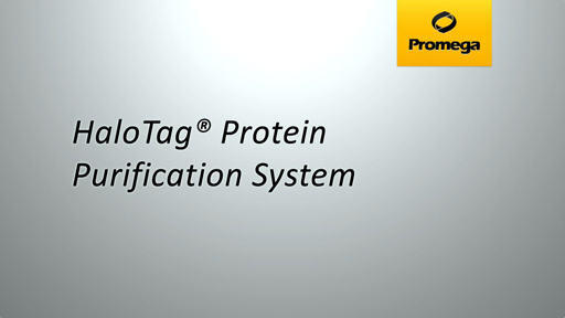 HaloTag Protein Purification System Animation